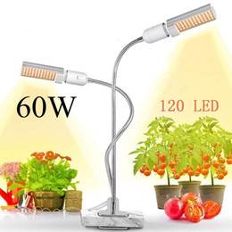 $enCountryForm.capitalKeyWord Australia - 60W 120LED Grow Light for Indoor Plant Sunlike Full Spectrum Grow Lamp,4 Dimmable Levels Plant Light Flexible Gooseneck and Replaceable Bulb