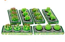 $enCountryForm.capitalKeyWord Australia - 2020 Wholesale simulation of succulent plant candles flowers home birthday scenes decorations small tea candles