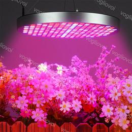 $enCountryForm.capitalKeyWord Australia - Full Spectrum 50W Led Grow Light Round Rice Shape Led Grow Tent Covered Green houses Lamp For Veg Flowering PC 110V 220V DHL