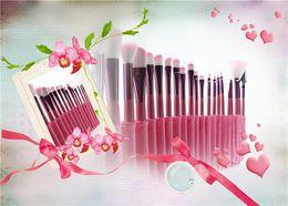 Goat Hair Dhl Australia - DHL New Makeup brushes makeup brush 22pcs Professional Brush sets Goat hair Pink DHL shipping+Gift free shipping