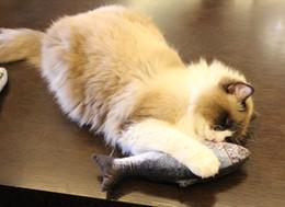 $enCountryForm.capitalKeyWord Australia - dhl Cat Toys 4pcs Simulation Fish Shape Doll Interactive Pets Pillow Chew Bite Supplies for Cat Kitty Kitten Fish Flop Cat Toy