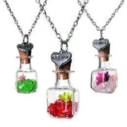 Flower Gift For Love Australia - Crystal Dry Flower Drift Wishing Bottle Necklace Gemini Heart pendants Designer Necklace for women Fashion jewelry 161547