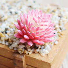 mini garden gifts Australia - Flower Artificial Plant Home Decor Lotus Plant Cactus Echeveria Office Gift Mini Landscape Decorative Fake Garden