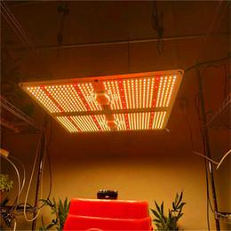 Spectrum Completo Samsung LED Grow Light 1000W / 2000W / 4000W com LM301B 234PCS 3000K Chips e UL Meanwell Driver Indoor Planting em Promoção