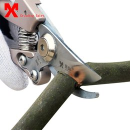trees cutters Australia - SK-5 Pruning Shear High Carbon Steel Fruit Tree Pruning Scissors Garden Pruning Sharp And Use Durable Knife Secateurs Scissors T200115
