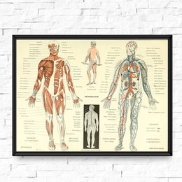 doctor prints canvas Canada - Vintage Human Anatomy Posters and Prints Skeleton Patent Wall Art Canvas Painting Pictures Doctors Office Wall Decor