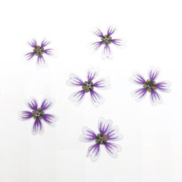 epoxy resin pendants Australia - 120pcs Pressed Dried Malva Sinensis Cavan Flower For Epoxy Resin Pendant Necklace Jewelry Making Makeup Craft DIY Accessories