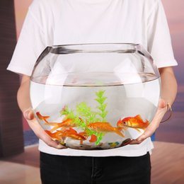 mUO1Z Creative round glass transparent large desktop thickened turtle Creative round glass transpare goldfish hydroponics living room fe tan on Sale