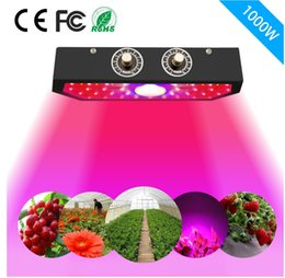 cob chips UK - Best-selling LED plant lamp 1000W new COB double chip lamp bead high-power plant growth lamp DHL