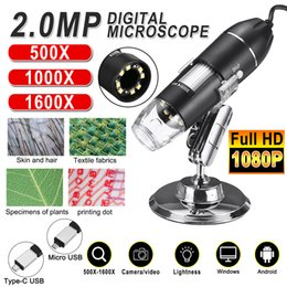 Venta al por mayor de Ajustable 1600x 2MP 1080P 8 LED Microscopio digital Tipo-C / Micro USB Magnifier Electronic Estéreo endoscopio USB para PC del teléfono