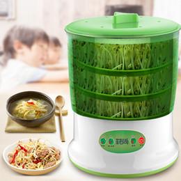 venda por atacado Automatic feijão Sprout Máquina 2-3 camadas com placa de pressão grande capacidade de Sementes da planta verde Termostato Máquina Crescer