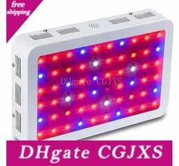 led grow lights indoor gardening NZ - Full Spectrum Led Grow Light Double Chip Led Plant Lamp 600w 800w 1000w 1200w 1600w Indoor Greenhouse Growing Garden Flowering Hydroponic L