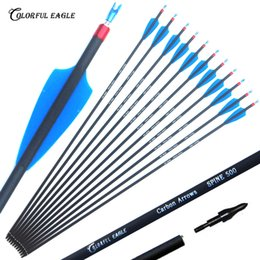 plastic spines NZ - 28 30 31-Inch OD7.6mm Spine 500 Outdoor Archery Carbon Arrows with Removable Tips for Compound Recuve Bow arrow Hunting Target Practice