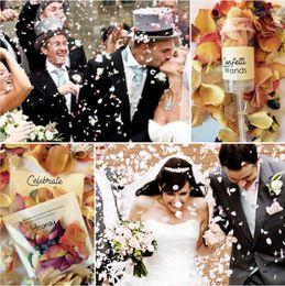 Empurre Popular Pop confetes coloridos Poppers Paper Wedding Party Início aniversário Decoração DIY Push-Pop Wedding Natal Suprimentos DHD1254 em Promoção
