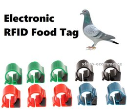 Wholesale chickens foot online – design RFID electronic foot ring for identifying Birds pigeon Chicken CM Khz TK4100 foot Ring ID tracking Tag For Training Supplies
