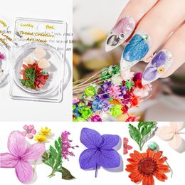 Discount 3d sticker flowers 1 Box Natural Dry Flower Nail Art Jewelry Real 3D Stickers for Nails Art Dried Flowers Nail Design DIY Manicure Decor 20