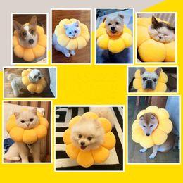 Großhandel Neue Sonnenblumenkragen einstellbar Haustier Hund Halsbänder Anti-Kratzer Anti Lecking Kopfbedeckung Nette Schöne Katze Halsbänder