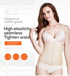 Wholesale lingerie modelling for sale – halloween waist trainer body shaper shapewear reducing shapers and models strap tummy Slimming Corset Binders lingerie belt underwear
