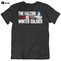 Falcon und The Winter Soldier Tv Show Fan-T-Shirt