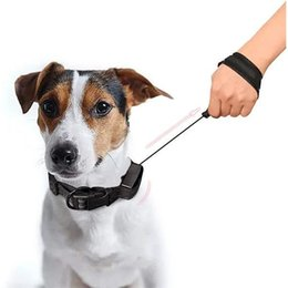 Discount retractable dog leash collar 2-in-1 Dog Line Traction Automatic Retractable New Collars Telescopic Rope Reflective Design Leash Harness Lead Warning
