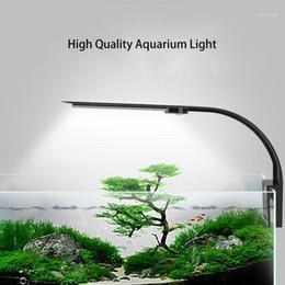 LED ACUARIO LIGHT LIGHTING Plantas Cultivar luz 5W / 10W Planta acuática Iluminación Impermeable Lámpara de clip-on para Fish Tank1 en venta