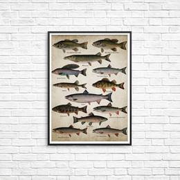 fish art paintings NZ - Fishing Angling Wall Art Canvas Posters Prints Breeds Of Fish Painting Freshwater Fish Wall Picture for Home Room Decoration KDIi#