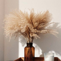 30 Stems Raw Color Plume Wedding Decor Flower Bunch Small pampas grass Home Deco Real Reed Natural Plant Ornaments on Sale