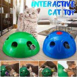 Colore casuale Cat Catnip Toys 1PCS Giocattoli interattivi per gatti Cat Nip Peluche Chew Toy Cuscino creativo Scratch Pet Catnip Denti macinatura Giocattoli da masticare