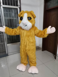 Wholesale pig mascots resale online - Guinea pig for Party Cartoon Character Polar bear Mascot Costumes for Sale support customization