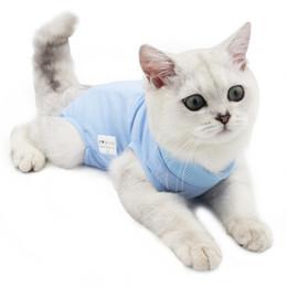 Traje de recuperación profesional de gatos para heridas abdominales o enfermedades de la piel transpirable después de la cirugía desgaste para las mascotas JK2012XB en venta