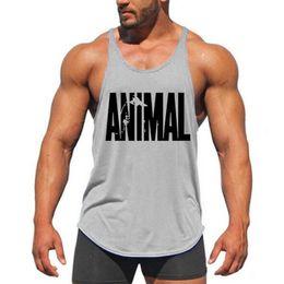Vente en gros Livraison gratuite Marque Gym Veste Vêtements Fitness Mens Muscle Bodybuilding Dershirts Débardeurs Hommes Gym Gym Sans Manches Vêtements de Singulet