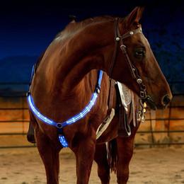 Venta al por mayor de Ajustable LED Poliéster Horse Harness Placa Placa Noche Visible Equipo de Equitación Equipo Deporte Carrera Cheval Equitación