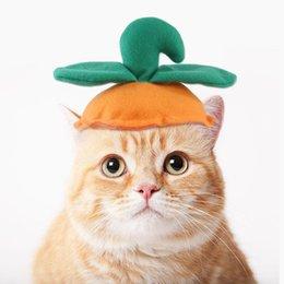 Опт US на складе на сток кот Хэллоуин тыквенная шляпа котенок косплей костюм костюм щенок щенок милые забавные шапки домашние животные кепки