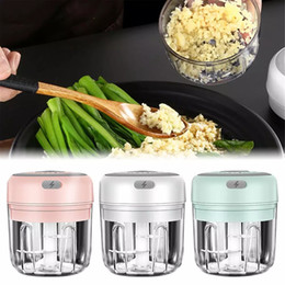 Wholesale Mini Electric Garlic Chopper 100 250ml Sturdy Durable Mini Crusher Portable Food Processor USB Charging Smart Kitchen Tool