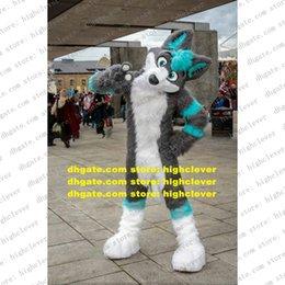 Lange bont harige grijze wolf husky hond vos fursuit mascotte kostuum volwassen cartoon karakter pak retourbanket groep foto ZZ7576