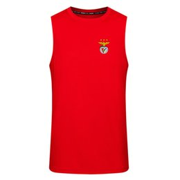 fans tops tees Australia - Benfica Football Fans Tops Jersey Tees Wholesale Customize Soccer Vest Breathable Men Training Clothes 100% Polyester
