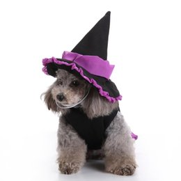 Wholesale sorcerer resale online - Halloween Christmas Puppy Funny Cute Cosplay Sorcerer Costume For Small Dogs Pet Clothes Dog Apparel