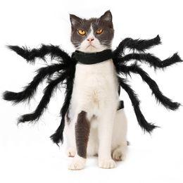 Mascota Super Funny Ropa Dress Up Accesorios Halloween Pequeño Perro Disfraz Cat Cosplay Spider en venta