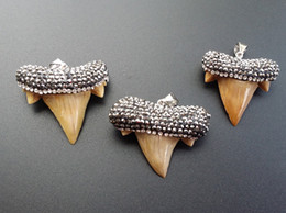 Wholesale sharks tooth for sale – custom 1pcs Unique natural shark tooth Paved crystal rhinestones elegant shark tooth pendant for DIY jewelry making SA