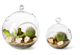 Hanging Glass Terrarium Wholesale Canada Best Selling Hanging