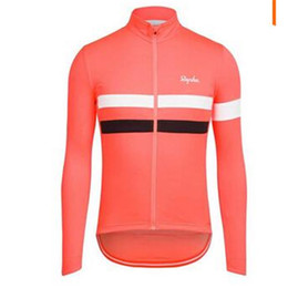 Chinese  Hight Quality 2015 Hot Quick Dry Breathable Classic Long Sleeve Cycling Jerseys More Color For Men MTB Cycling Jersey manufacturers