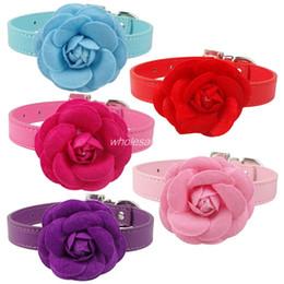 Shop Small Flower Dog Collar Uk Small Flower Dog Collar Free
