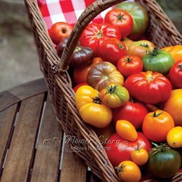 200 mixed tomato seeds vegetable diygreat addition to your garden free shipping