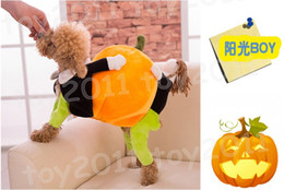 Hoodie Sweater Female Canada - New Arrival Lovely Pet Dog Clothes Pet mobile pumpkin clothes Hoodie Pumpkin Sweater Clothing For Dogs Dog Sweater Costume Coat for Pet