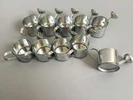 Galvanized pots online shopping - Cheap Galvanized Watering cans for small plant Decorative Silvery watering cans wedding favor holders candy holders