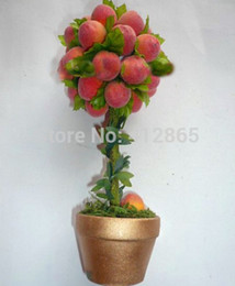Peaches seeds online shopping - Top quality Xinjiang Small Potted Tree Flat Peach Seeds Everything To Gain If The king Delicious Fruit