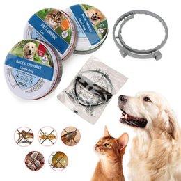 venda por atacado Navio rápido Bayer Animal Saúde Seresto pulga tick colar para cães gatos até 8 meses Chigoe ovo de mantis anti-mosquito e repelente de insetos 10 pcs