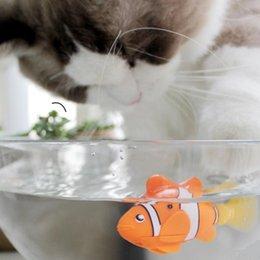 Der muschi in fisch Fisch In