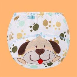 Pañales lavables Pañales de tela reutilizables Pañales de tela impermeable Cubierta de pañal de algodón recién nacido para niños Pantalones de entrenamiento Potty Ropa interior 940 x2 en venta