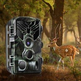WIFI + Bluetooth Versión infrarrojo Night Vision Rastrear Cámara WiFi830 Fauna Scouting Photo Traps Can Support Aplicación móvil en venta